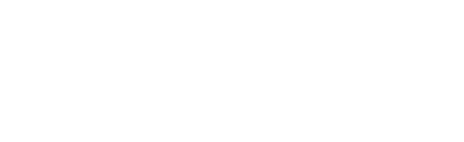 NLSS Logo